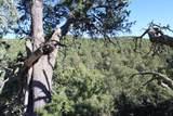 TBD Fisher Peak Ranch Lot M5 - Photo 42