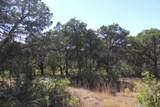 TBD Fisher Peak Ranch Lot M5 - Photo 5