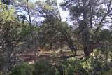 TBD Fisher Peak Ranch Lot M5 - Photo 6