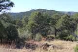 TBD Fisher Peak Ranch Lot M5 - Photo 9