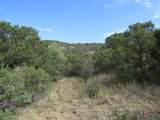 TBD Rancho Verde - Photo 1