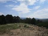 33024 Ponderosa Ridge Dr - Photo 12
