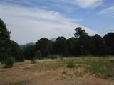 33024 Ponderosa Ridge Dr - Photo 13