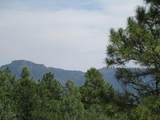 33024 Ponderosa Ridge Dr - Photo 19