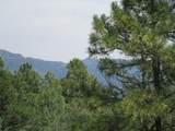 33024 Ponderosa Ridge Dr - Photo 20
