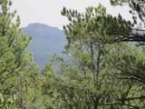 33024 Ponderosa Ridge Dr - Photo 8