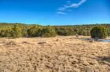TBD River Ridge Ranch - Photo 12