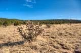 TBD River Ridge Ranch - Photo 5