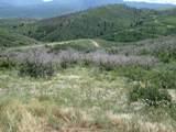 32 Raspberry Mt. Ranch Filing #3 - Photo 13