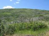 32 Raspberry Mt. Ranch Filing #3 - Photo 19