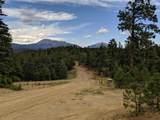 TBD North Fork Ranch - Photo 14