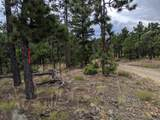 TBD North Fork Ranch - Photo 15