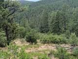 TBD North Fork Ranch - Photo 3