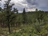 TBD North Fork Ranch - Photo 7