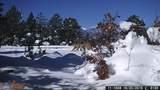 25110 Ridgeline - Photo 65