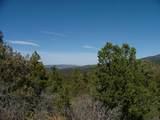 TBD Old Mission Ridge - Photo 9