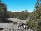 TBD Cedarwood Trail - Photo 25