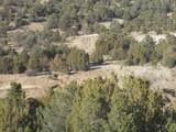 12927 Cottonwood Way - Photo 33