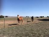 Cr 524-Majors Ranch - Photo 9