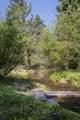 49 Lake Trail - Photo 60