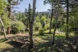 49 Lake Trail - Photo 64