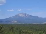 TBD Fishers Peak View - Photo 10