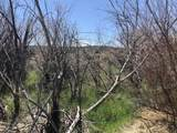 Lot 1 Roybal Townsite - Photo 21