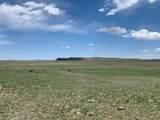 Lot 262 Colorado Land & Livestock - Photo 1