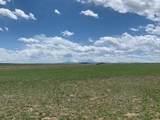 Lot 262 Colorado Land & Livestock - Photo 2