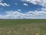 Lot 262 Colorado Land & Livestock - Photo 3