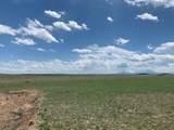 Lot 262 Colorado Land & Livestock - Photo 4