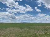 Lot 262 Colorado Land & Livestock - Photo 5