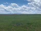 Lot 262 Colorado Land & Livestock - Photo 6