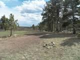 TBD Mt. Elbert Drive - Photo 12