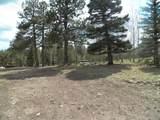 TBD Mt. Elbert Drive - Photo 13