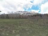 TBD Mt. Elbert Drive - Photo 3