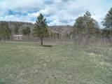 TBD Mt. Elbert Drive - Photo 9