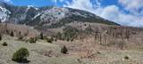 Co Rd 531 - Photo 11