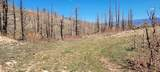 Co Rd 531 - Photo 21