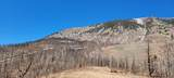 Co Rd 531 - Photo 26