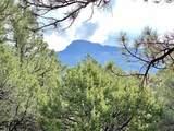 5512 Elk Ridge Trail - Photo 1