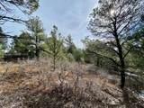 5512 Elk Ridge Trail - Photo 13
