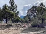 5512 Elk Ridge Trail - Photo 2