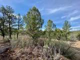 5512 Elk Ridge Trail - Photo 3
