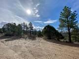 5512 Elk Ridge Trail - Photo 4