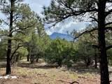5512 Elk Ridge Trail - Photo 6