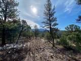 5512 Elk Ridge Trail - Photo 9