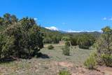 TBD Canyon Springs Rd - Photo 12