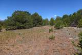 TBD Canyon Springs Rd - Photo 13