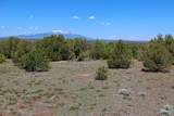 TBD Canyon Springs Rd - Photo 21